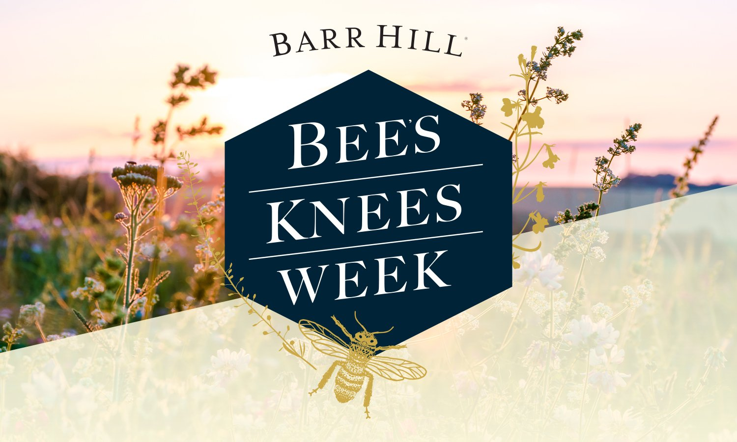 Bees Knees Campaign