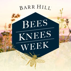 Bees Knees Campaign Chicklet